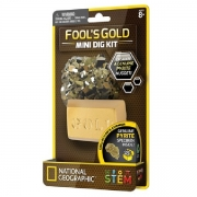 National Geographic Mini Dig Fools Gold