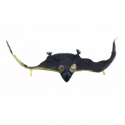 Softland Flying bat 64 cm